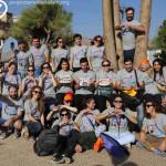 volunteer lebanon
